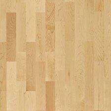 "American Naturals 3-Strip 7-7/8"" Engineered Hard Maple Toronto"