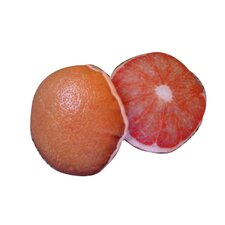 Tough Chew Grapefruit Dog Toy