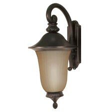 Parisian 1 Light Wall Lantern