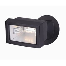 1 Light Flood Light