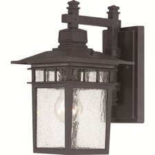 <strong>Nuvo Lighting</strong> Cove Neck 1 Light Outdoor Wall Lantern