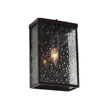 <strong>Varaluz</strong> Mission You 1 Light Outdoor Wall Lantern