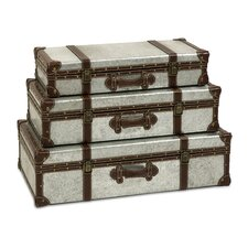 Theodric Galvanized Trunk Set