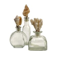 Shell Stopper Glass Bottles (Set of 3)