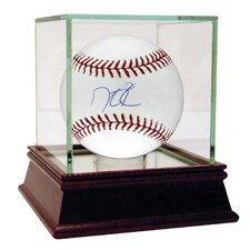 MLB Dustin Pedroia Baseball