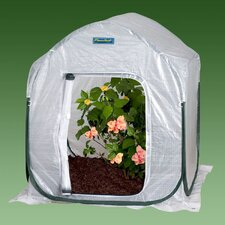 "4.5"" H x 4.0' W x 4.0' D PlantHouse Polyethylene Mini Greenhouse"