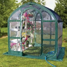 Springhouse 6 Ft. W x 6 Ft. D Polyethylene Greenhouse