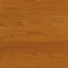 "High Gloss 3-1/4"" Engineered Red Oak Flooring in Butterscotch"