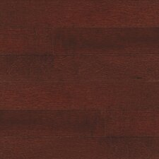 "Specialty 5"" Engineered Maple Flooring in Maple Cherry"