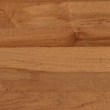"Solid 5"" Maple Plank Flooring in Tumbleweed"