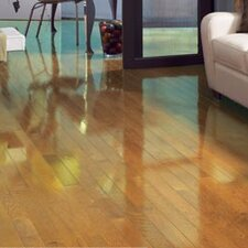 """Color Strip 2-1/4"""" Solid White Oak Flooring in Natural High Gloss"""