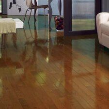 "Color Strip 2-1/4"" Solid Red Oak Flooring in Gunstrick High Gloss"