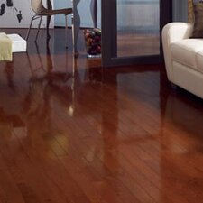 "Color Strip 3-1/4"" Solid Red Oak Flooring in Cherry Oak High Glass"