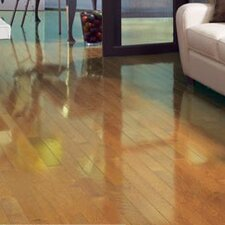 """Color Strip 3-1/4"""" Solid Red Oak Flooring in Natural High Gloss"""