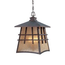 Oak Park 4 Light Hanging Lantern