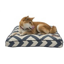 Spellbound Premium Cotton Square Pillow Dog Bed