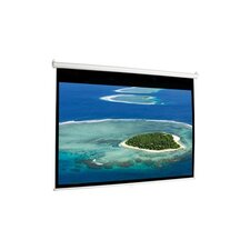 Pull Down Manual Projection Screen
