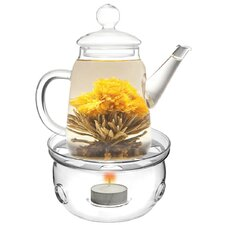 Duo Teapot with Tea Warmer Cozy