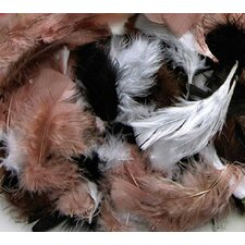 Assorted Quill Feathers Natural Color