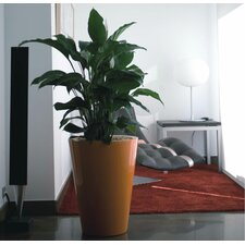 <strong>Smart & Green</strong> Fang Cono Alto Lacquered Round Flower Pot Planter
