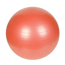 "<strong>Sunny Health & Fitness</strong> 21.65"" Anti-Burst Gym Ball"