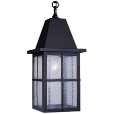 Hartford 1 Light Outdoor Hanging Lantern
