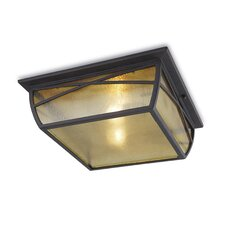 Alba 2 Light Ceiling Flush Light