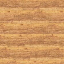 "Solidity 20 Century 6"" x 36"" Vinyl Plank in American Chestnut"