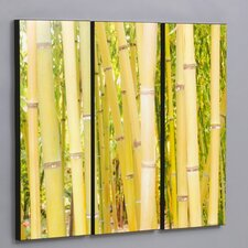 "Three Piece Hawaiian Bamboo Forest Laminated Framed Wall Art Set - 36"" x 44"""