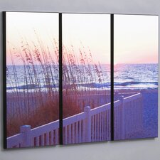 "Three Piece Gulf Sunset with Sea Wheat Laminated Framed Wall Art Set - 36"" x 53"""