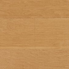 "Wilson 5"" Engineered Hardwood Maple Flooring in Caramel"