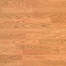 Traditional Clicette 7mm Oak Laminate in Georgia Oak Natural