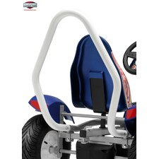 Racing Roll Bar