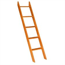 <strong>University Loft</strong> Graduate Series Ladder
