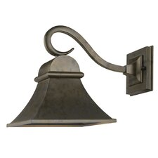 Dark Sky Revere 1 Light Outdoor Wall Lantern