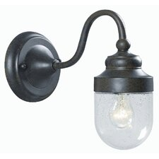 Dark Sky 1 Light Small Outdoor Wall Sconce