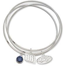 <strong>LogoArt®</strong> NASCAR Driver Triple Bangle Bracelet