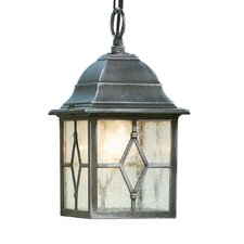 LaMeuse 1 Light Outdoor Hanging Lantern in Silver