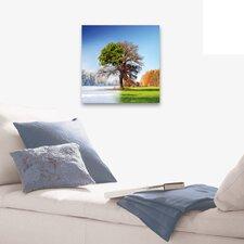 "Wandbild ""4 Seasons"" - 50 x 50 cm"