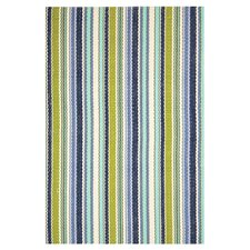 Woven Pond Stripe Indoor/Outdoor Rug