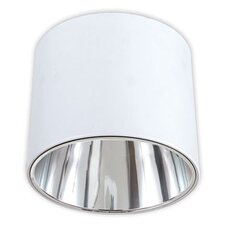 <strong>Eurofase</strong> 2 Light Flush Mount - Glass