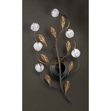 Arbour 6 Light Wall Sconce