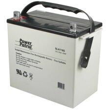 12 Volt 55 Amp Sealed Lead Acid Wheelchair Battery (Set of 2)