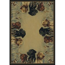 Hautman Labs in Marsh Novelty Rug