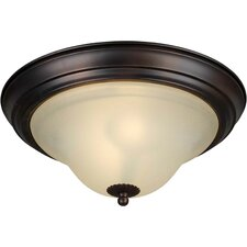 <strong>Forte Lighting</strong> Energy Efficient 2 Light Flush Mount
