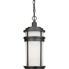 Columbia 1 Light Outdoor Chain Pendant
