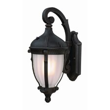 Anapolis 1 Light Outdoor Wall Sconce