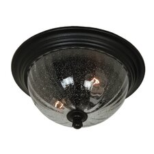 <strong>Artcraft Lighting</strong> Anapolis 1 Light Outdoor Flush Mount