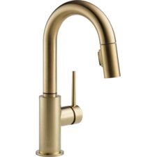 Trinsic Single Handle Single Hole Pull-Down Kitchen Faucet with Diamond Seal Technology
