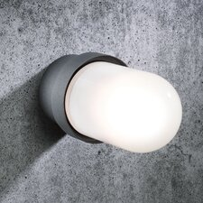 Elements Outdoor 1 Light Flush Wall Light